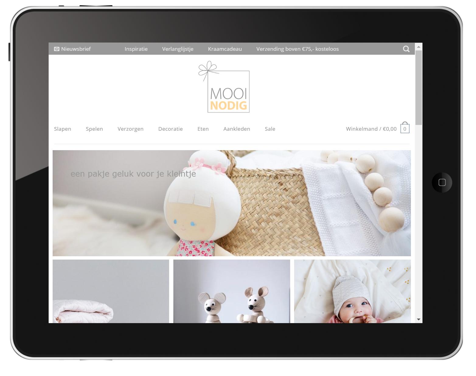 MooiNodig iPad landscape 1024 x 768